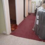 Carpets, Carpets and Carpets