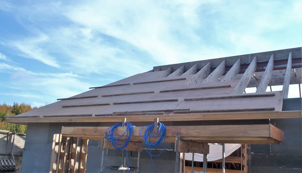 Ten Sheets Of Plywood Is Up On Roof!