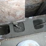 Concrete Filling Begins on Back Wall