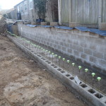 First Row of Front Wall Completed